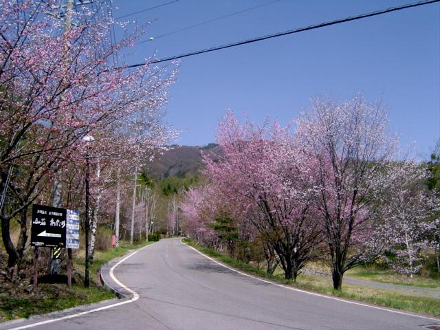 温泉宿山荘わたりの入り口看板