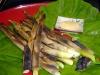 根曲がり竹の焼き物