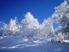 山荘わたりHPトップ _樹氷