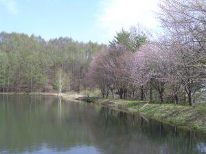 春の奈川フィッシングエリア